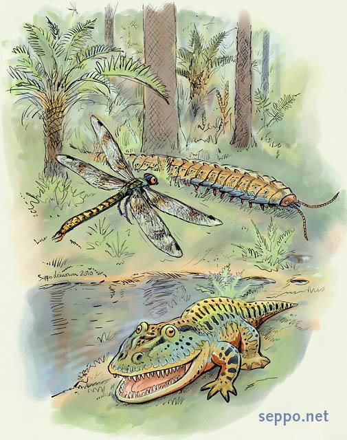 Amazoncom The Rise of Amphibians 365 Million Years of